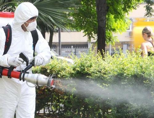Böcek İlaçlama Hakkında Yanlış Bilinenler